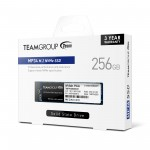 Team Group MP34 256GB